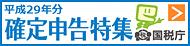 平成29年份最终申报专刊